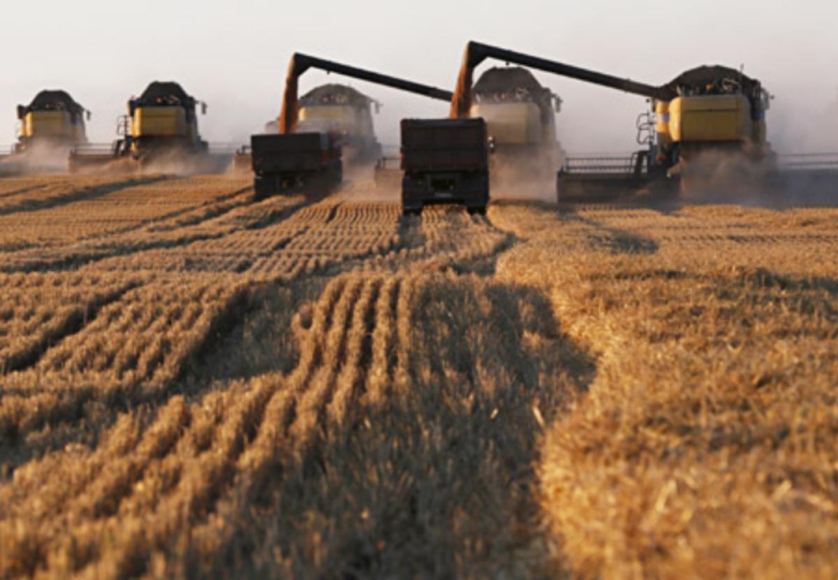Patlayan buğday değerli bir gıda ürünü almak için doğru yoldur
